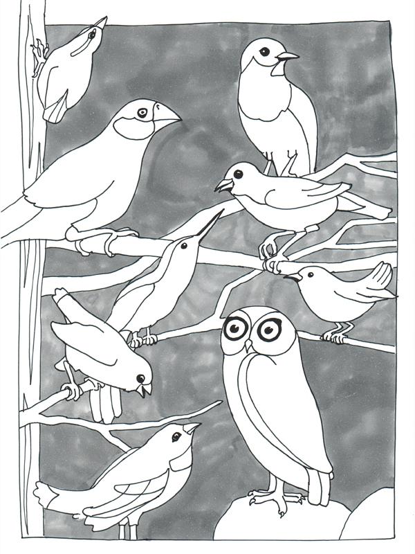 Vogelparade